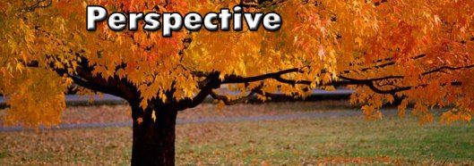 Blog-Perspective-Areal-view8-11.13.15