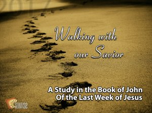 2017-Walking-with-Our-Savior-through-the-Book-of-John